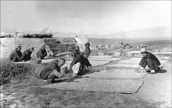 Men drying or sorting food on mats in the open air in Kashgar, western China