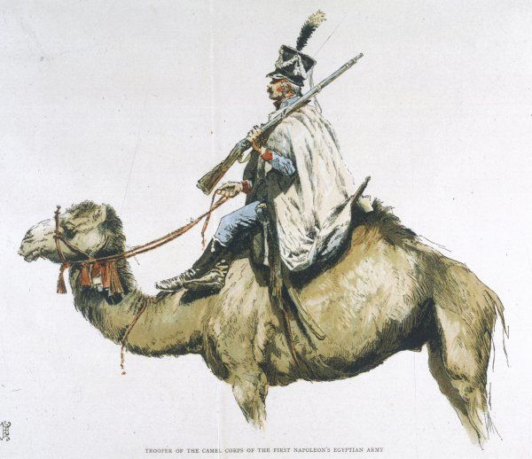 Trooper of the Camel Corps of Napoleon's Egyptian campaign
