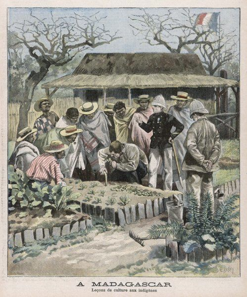 Benevolent colonialism - in Madagascar, the French instruct the natives in horticultural techniques