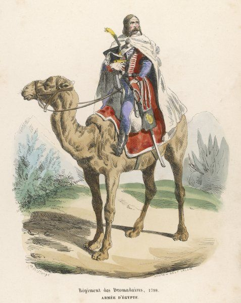 Regiment des Dromadaires, during Napoleon's Egyptian campaign