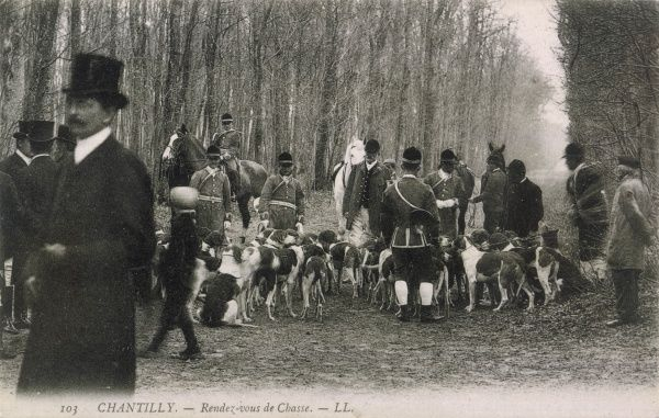 French chasseurs meet in the forest of Chantilly, north of Paris. The huntsmen wear the traditional livery