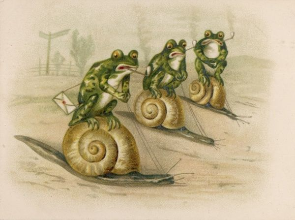 Three frogs mounted on snails race each other