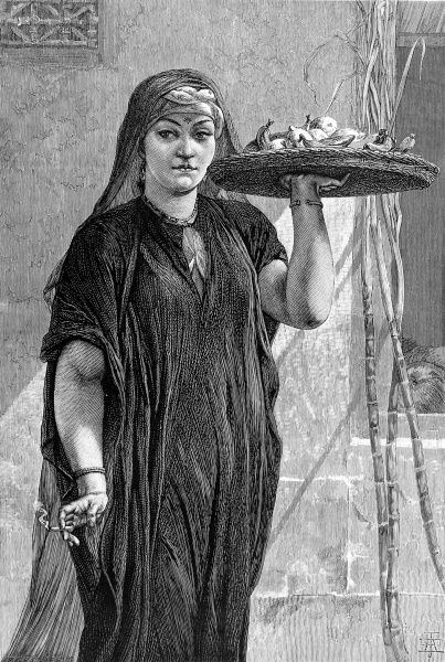Engraving made from a painting by F. Goodall, entitled 'A Fruit-Woman of Cairo', exhibited at the New British Institution, 1875. Date: 1875