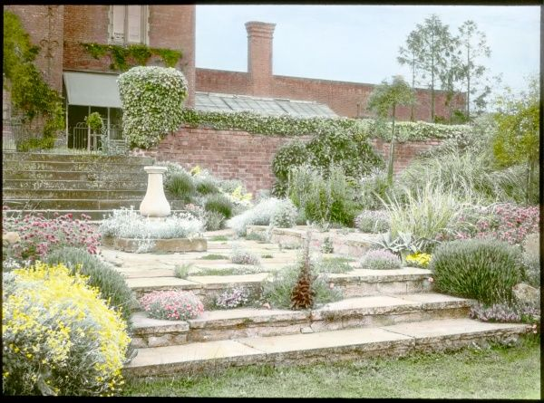 An unidentified garden in Cambridgeshire, showing plants and shrubs growing around a flight of stone steps, a red brick garden wall, and a house in the background