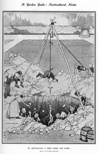 Illustration by William Heath Robinson (1872-1944) showing a typically convoluted method of weeding a garden lawn. A man is hosted by ropes supported by a teepee configuration of poles worked by onlookers. He holds a corkscrew type instrument in his hand