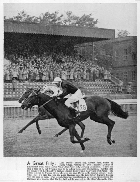 Garden Path, a brown filly belonging to Lord Derby and ridden by Harry Wragg, pictured winning the Two Thousand Guineas at Newmarket against Major David Wills' Blue Peter colt, Growing Confidence in 1944