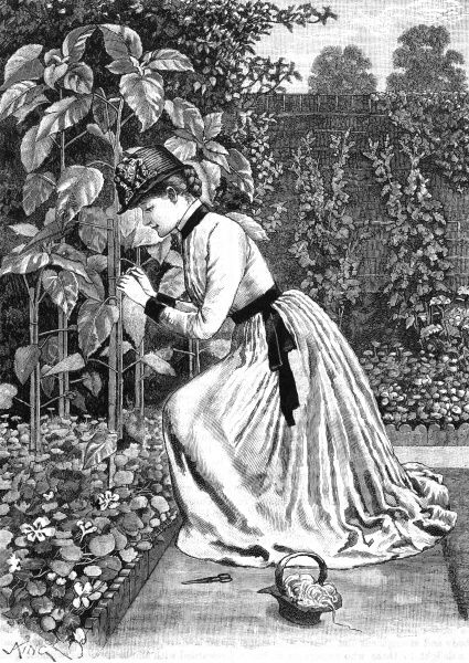 A smartly-dressed lady in her garden stakes some tall plants. Date: 1889