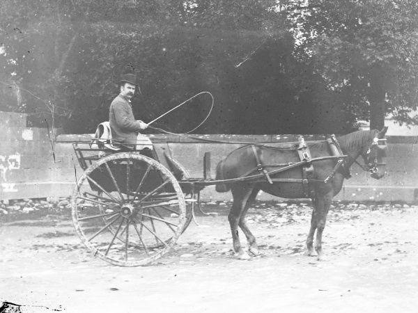 A gentleman driving a horse and trap on a street in Mid Wales