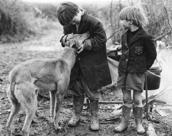 Two scruffy little gipsy boys, one wearing an old school blazer and both wearing wellies. One of the boys strokes a dog's head and it laps up the affection
