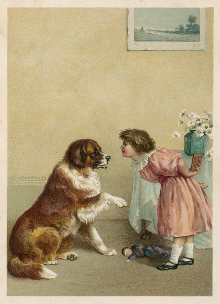 'Give me your paw !' - a small girl shakes hands with her Saint Bernard before giving it a dog-biscuit