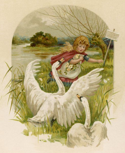 A small girl, gathering flowers by the water's edge, is alarmed by the sudden appearance of a couple of swans