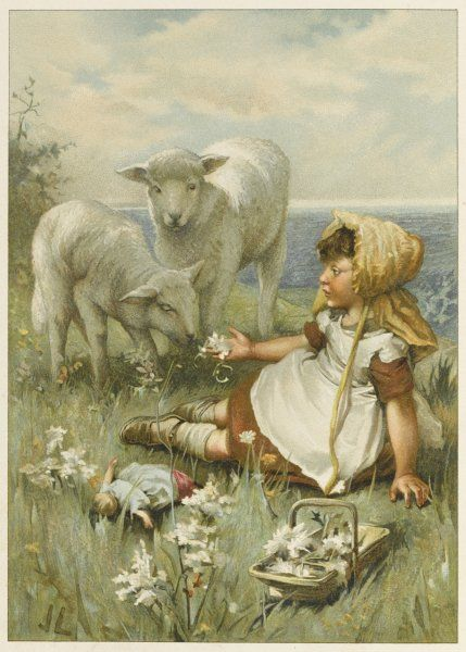 A little girl tries to interest some lambs in the flowers she's picking : they wonder if they are fit to eat?