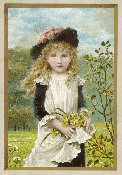 A pretty, rosy-cheeked young maid in a picturesque costume of black velvet dress & soft hat with pink plumes gathers daffodils (narcissi) in her clean white apron