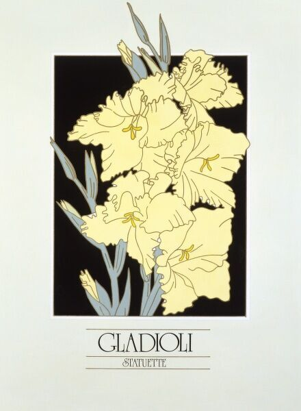 A very bold and strong depiction of a group of Gladioli blooms by Malcolm Greensmith