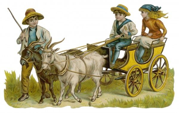 Two children ride in a goat-cart led by another