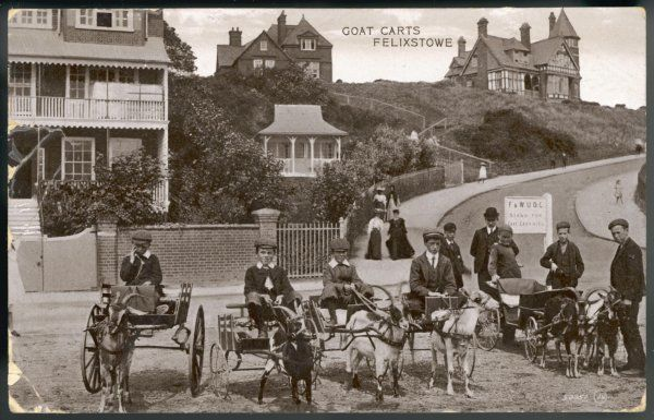 Goat carts and people at Felixstowe, Suffolk