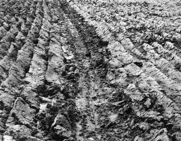 The good, freshly ploughed soil of England. Date: 1950s