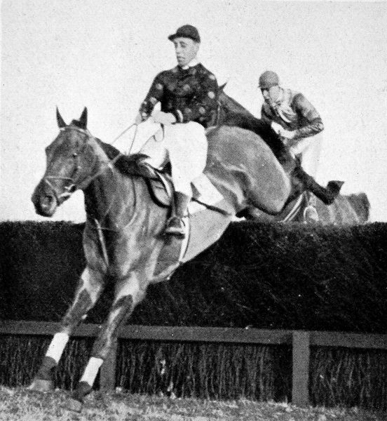 Photograph showing the racehorse 'Grakle' jumping the last fence of the Winchester Steeplechase on his way to winning the race