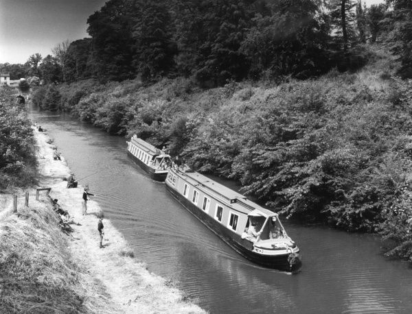 Cruising narrow boats 'Mabel' and 'Forget-me-Not', southbound on a fine wooded stretch of the Grand Union Canal, near Walton, Northamptonshire, England. Date: 1960s