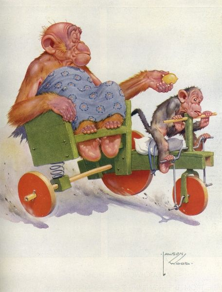 Granpop, the orang utan character created by Lawson Wood enjoys a ride in a homemade, ramshackle carriage pulled by a sweltering little monkey on a bicycle. Thinking the vehicle requires more fuel, Granpop helpfully offers a lemon to his driver