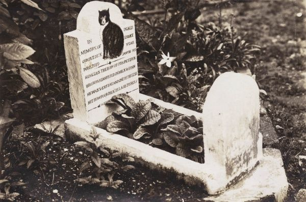 The grave and headstone of a pet dog named Dick, who departed this life on 25 January 1907 at the age of eight. He was fed on milk and fish, and was very fat