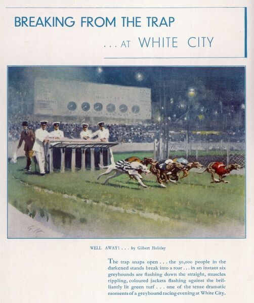 An advertisement for greyhound racing at White City stadium with a painting by Gilbert Holiday