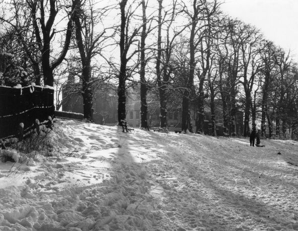 A winter scene on Hampstead Heath, London, with morning sunshine after a fall of snow. Date: 1960s