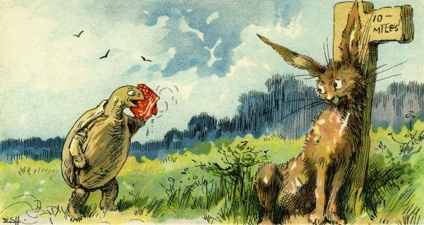 The Hare & the Tortoise. Artist: Evelyn S Hardy. An Aesops' fable Date: circa 1906
