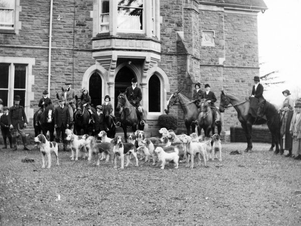 Members of the Crickhowell Harriers Hunt with horses and hounds in Powys, Mid Wales. The building in the background is possibly the Old Rectory in the nearby village of Llangattock. Date: 1908