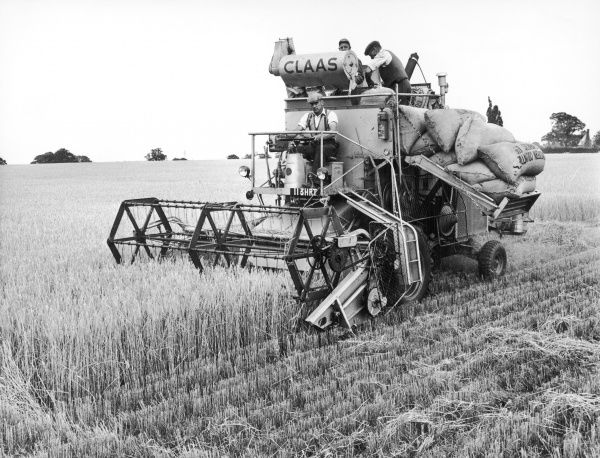 Harvesting barley with a combine harvester on a farm in Suffolk, England