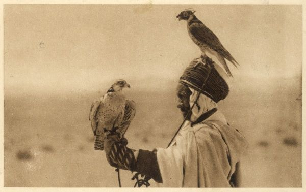 An Algerian falconer with two hunting birds