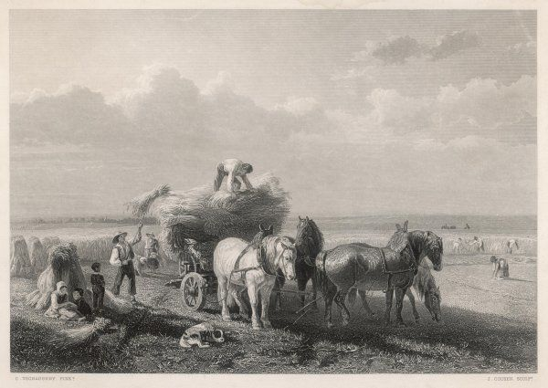 Loading the hay cart during harvest