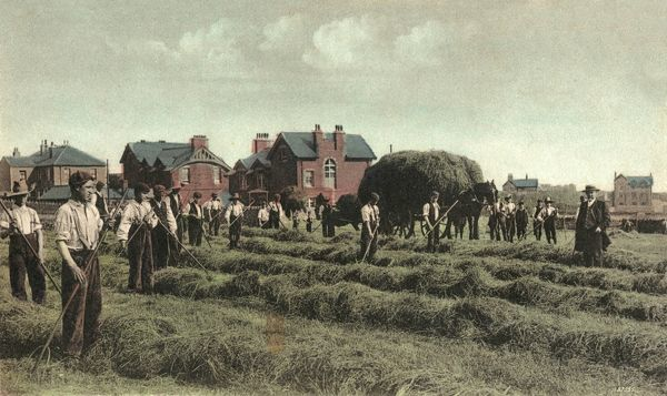 Boys harvesting hay at the National Children's Home, Edgworth, near Bolton, Lancashire