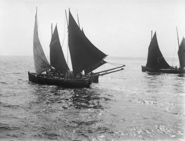 Herring boats off St Ives, Cornwall, on a calm sea