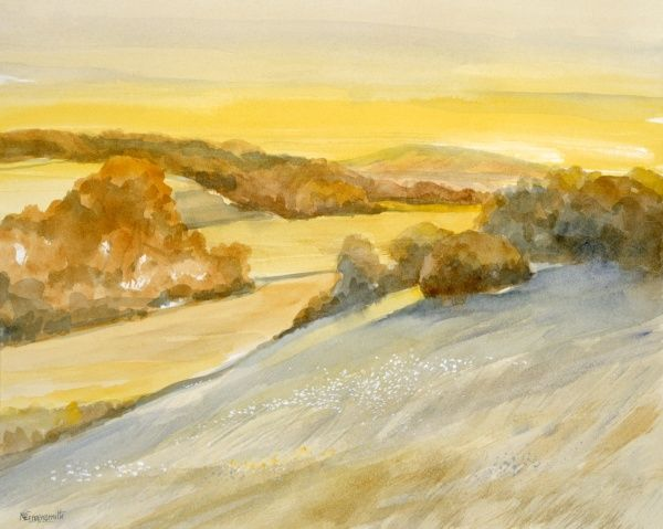 A view across sun-drenched evening hills in high summer. Painting by Malcolm Greensmith