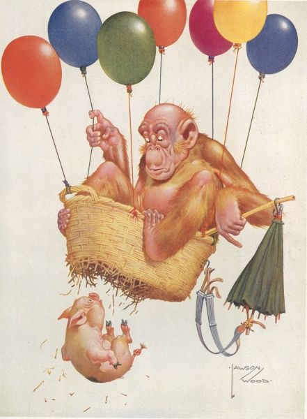 Humorous illustration by Lawson Wood showing his orang utan character, Gran'pop sitting in precariously in a homemade hot air balloon. A little piglet falls out of the bottom of the basket