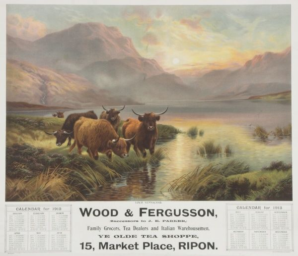 Calendar for Wood & Fergusson's Ye Olde Tea Shoppe in Ripon featuring a scene of the Scottish Highlands, with Highland cattle in the foreground