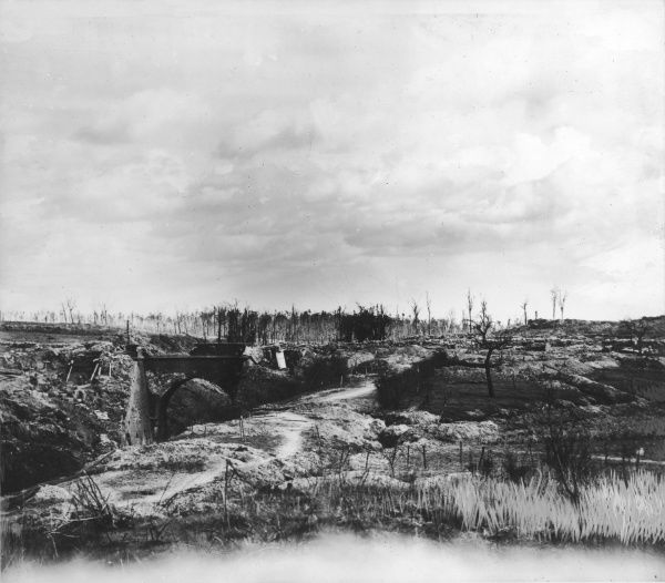 Hill 60 in the Ypres Salient after the battles for its possession in France during World War I