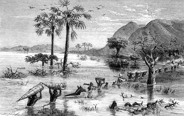 Engraving showing Sir Henry Morton Stanley's expedition crossing the Makata swamp in Central Africa, 1871. In October 1869, Stanley (1841-1904) was sent by James Gordon Bennett (owner of the New York Herald) to find Dr. David Livingstone