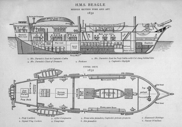 HMS Beagle Charles Darwin's research ship