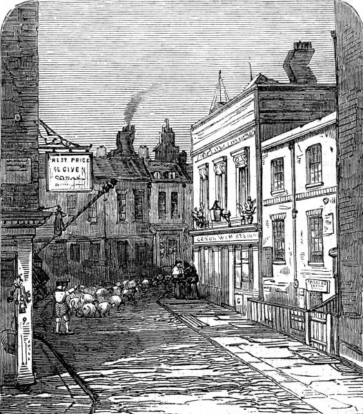 Engraving showing a street view of Hockley-in-the-Hole, Clerkenwell, London, 1859