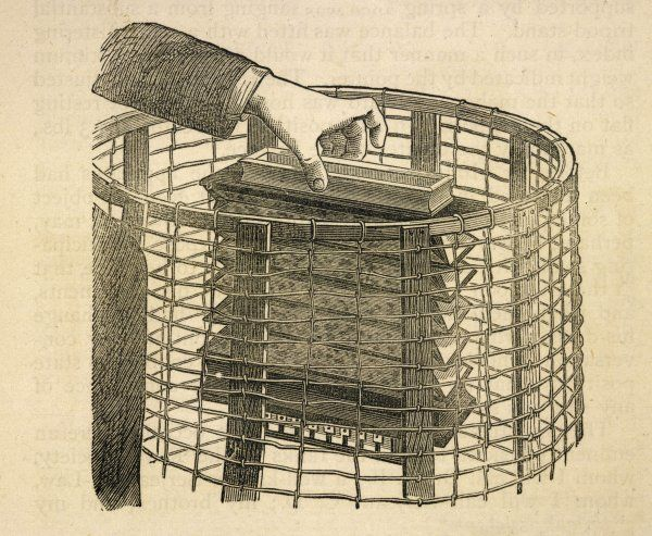 HOME TESTED BY SIR WILLIAM CROOKES : How the accordeon was placed in the cage so that Home could not play it