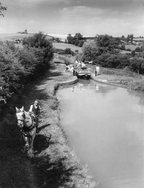 A horse on the tow path of the Oxford Canal at Napton, Warwickshire, England. It is pulling a narrow pleasure boat full of holidaying students. Date: early 1960s