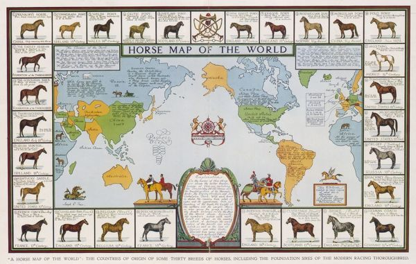 Horse map of the world, showing different breeds