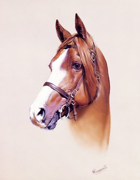 A highly detailed portrait painting of a horse by Malcolm Greensmith