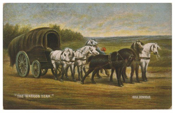 Six horses pull a wagon - whatever's inside must be pretty heavy, or else the road isn't all as level as this stretch