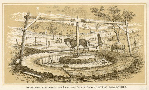 The first horse-powered rotary puddler in use at Pennyweight Flat, Ballarat, Victoria, during the Australian gold rush. Puddling involved breaking up clay soil containing gold