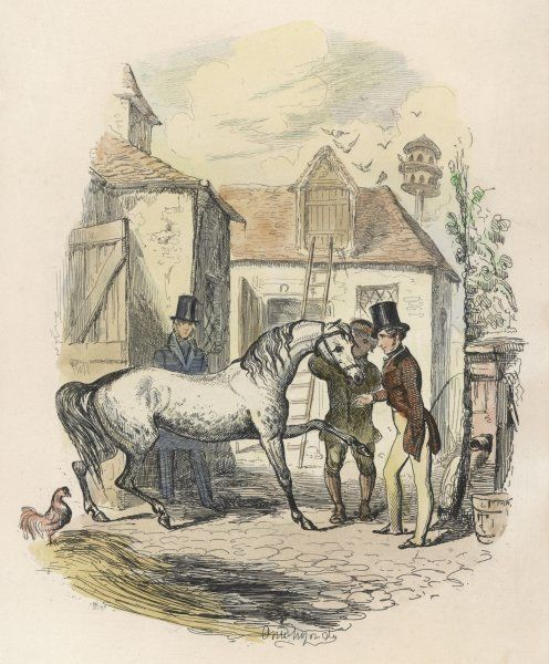 A young man considers the purchase of a dapple-grey horse