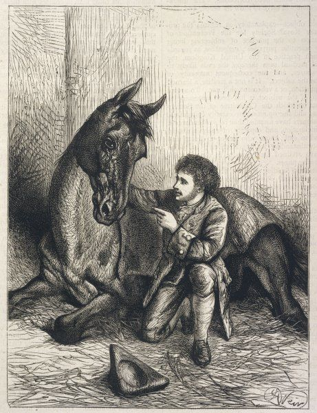 JAMES SULLIVAN, the Irish 'horse whisperer' of Dunhallow, County Cork (Ireland), who was able to tame horses almost instantaneously