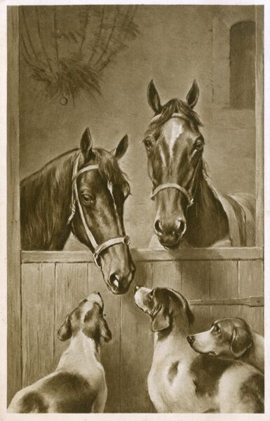 Two Horses peer over the edge of their stall to converse with three hounds Date: circa 1910s